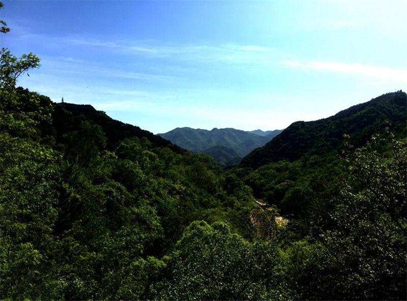 八达岭陵园环境